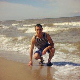 Сергей, 28 лет, Нестеров