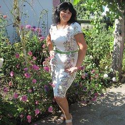 Юля, 41 год, Широкое