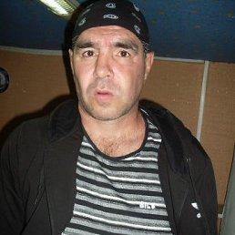 Серёга, 44 года, Валуйки