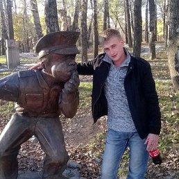 Андрей, 28 лет, Завитинск
