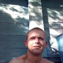 Николай, 36 лет, Курковицы