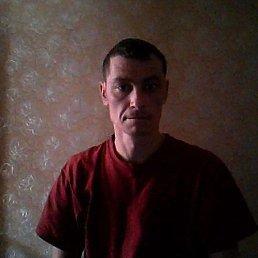 алексей, 47 лет, Рошаль