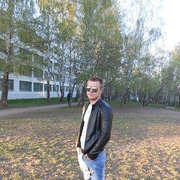 андрей, 29 лет, Щекино