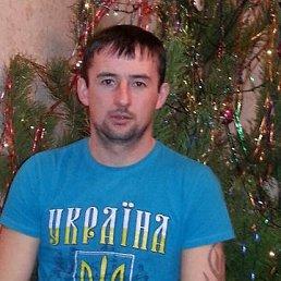 Николай, 34 года, Новая Водолага