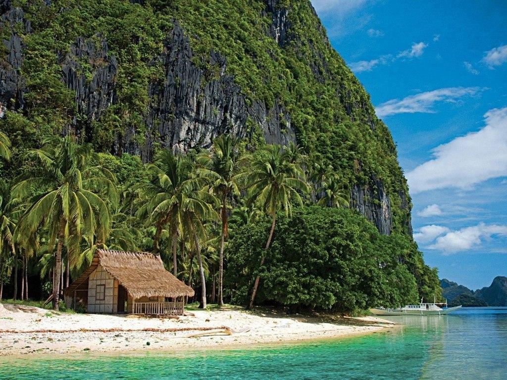 Фото тропиков островов