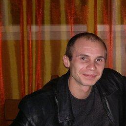 Сергей, 30 лет, Кировск