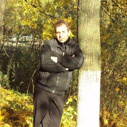 Игорь, 48 лет, Струнино