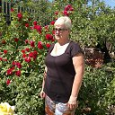 Фото Марина, Волгоград, 67 лет - добавлено 2 июня 2015