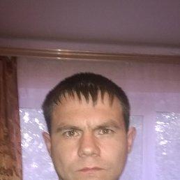 Фото Сергей, Лесной, 37 лет - добавлено 11 июня 2015