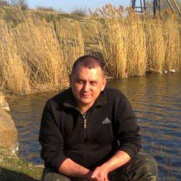 Александр, 41 год, Александрия