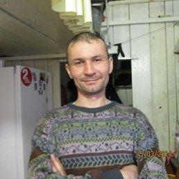 Алексей, 41 год, Грахово