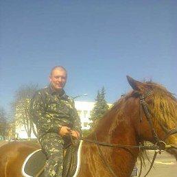 Александр, 39 лет, Радомышль