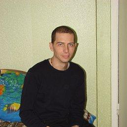 Юрий, 41 год, Кириши