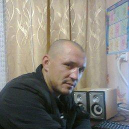 николай, 41 год, Советский