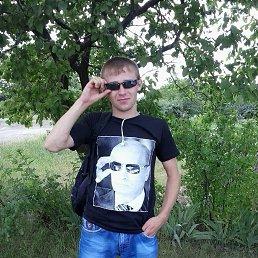 Дмитрий, 27 лет, Кировское
