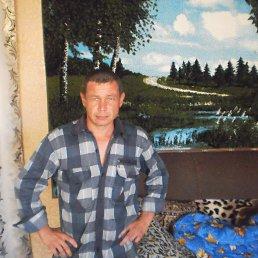 александр, 42 года, Шипуново