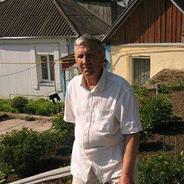 Леонид, 64 года, Богуслав