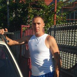 александр, 36 лет, Беляевка