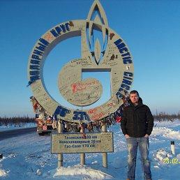 Александр, 28 лет, Кодинский