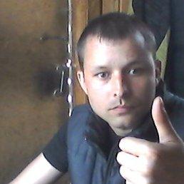 Андрей, 30 лет, Мга
