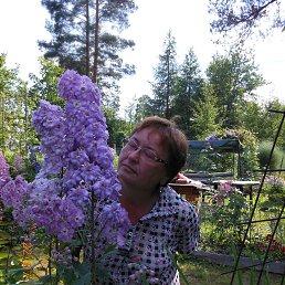 Валентина, 67 лет, Вырица
