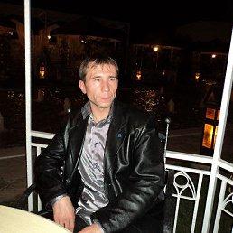 Владимир, 45 лет, Александрия