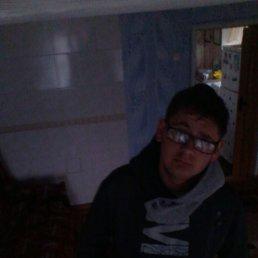 Евгений, 22 года, Кирилловка