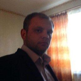 Никита, 27 лет, Зерноград