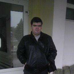 Роман, 27 лет, Миллерово