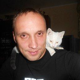 Тимон, 39 лет, Санкт-Петербург