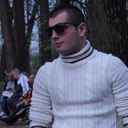 Ярослав, 27 лет, Троицк