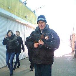 Алекс, 63 года, Здолбунов