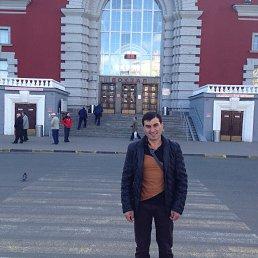 Стёпа, 30 лет, Курск