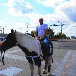 Сергей, 37 лет, Вязьма