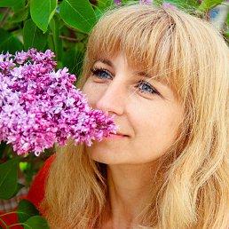Алёна, 45 лет, Тульчин