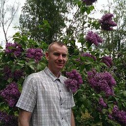 Виктор, 43 года, Одинцово