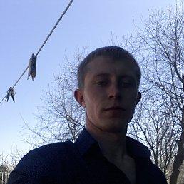 Дмитрий, 30 лет, Воронеж
