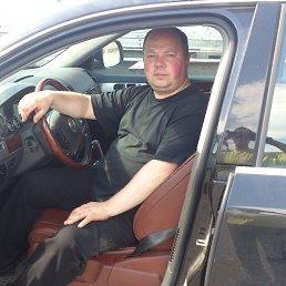 Олег, 44 года, Оленегорск-2