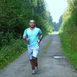 Николай, 28 лет, Ликино-Дулево