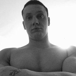 Nikolay, 30 лет, Сургут