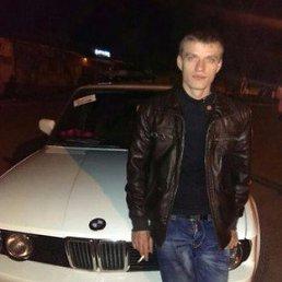 Ярик, 28 лет, Боярка