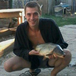 Александр, 29 лет, Мокроус