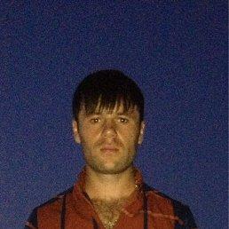Максим, 29 лет, Моздок