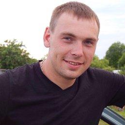 Андрей, 29 лет, Золотое
