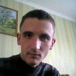 Андрій, 28 лет, Камень-Каширский