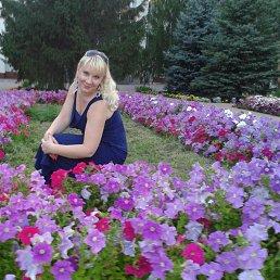 Яна, 39 лет, Тольятти