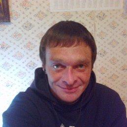 Андрей, 39 лет, Радомышль