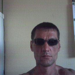 Владимир, 46 лет, Березники