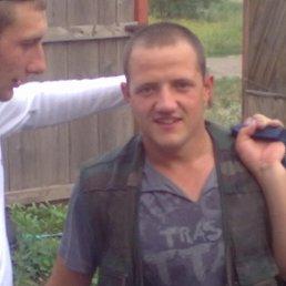 Александр, 28 лет, Гальбштадт