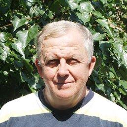 Анатолий, 65 лет, Коростень